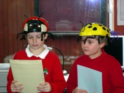 Minsterley Primary school ladybirds