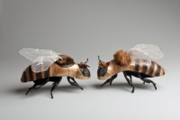 Two model bees head-to-head